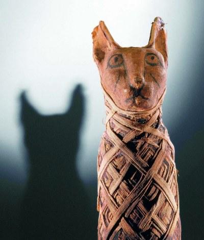 apr-6-cat-mummy-egyptian
