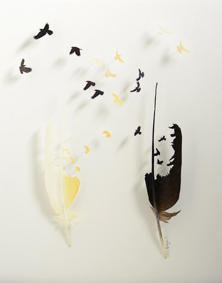 feathers-chris-maynard1-750x956