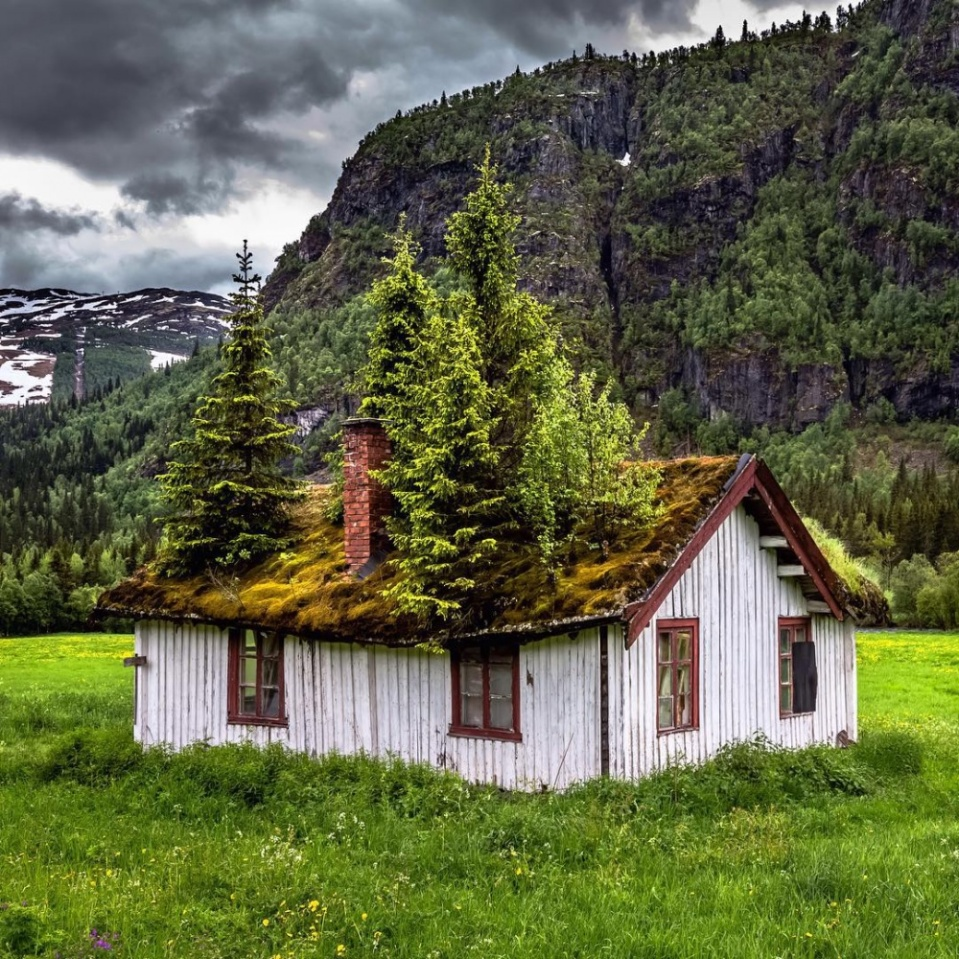 norwegianhouse