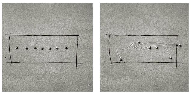 snail-drawings-daniel-ranalli-03